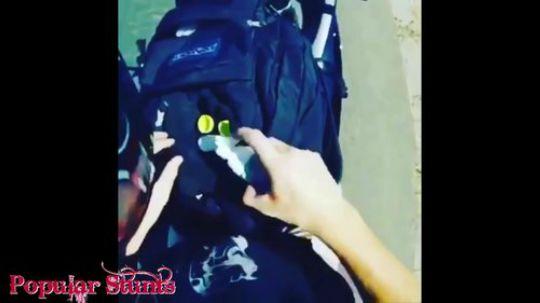 2016-2017摩托车的傻缺碉堡锦集