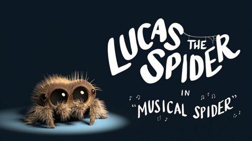 激萌小蜘蛛-卢卡斯!一秒治愈你的蜘蛛恐惧症!