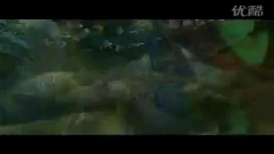 魔兽世界:祖阿曼的怒火
