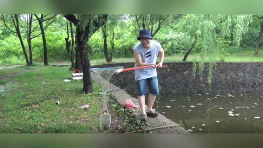小伙在池塘用猪肺钓大龙虾,看看小伙到底钓到了多少
