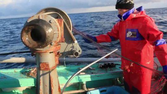 实拍日本北海道渔民出海捕帝王蟹